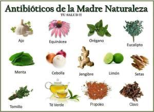 antibioticos de la naturaleza